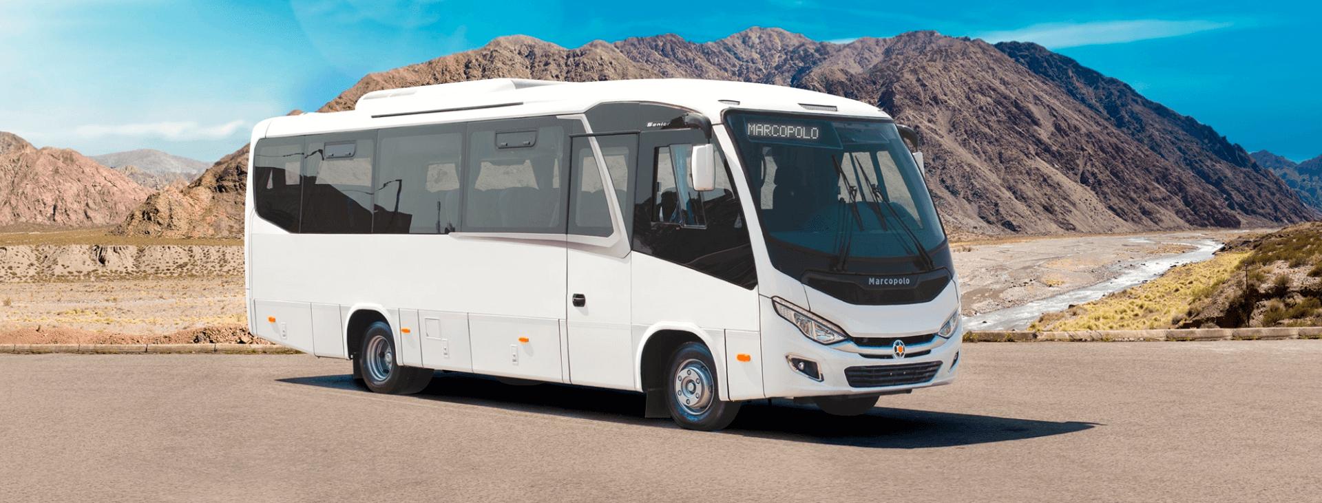 buses-micros-mercobus