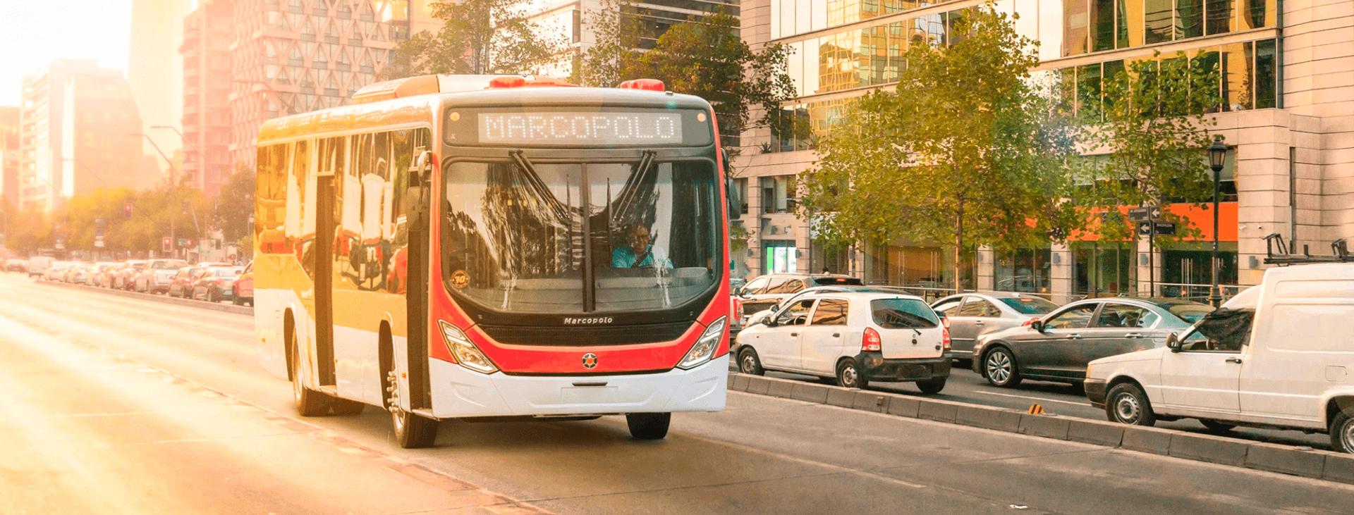 mercobus-urbanos