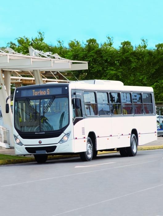 torino-bus (5)